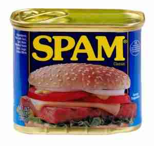 Spam | Spotting SPAM Comments In Your Blog