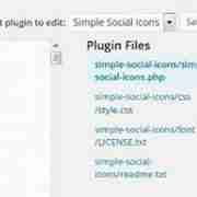 Simple Social Icons Plugin Editor